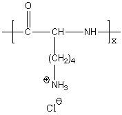 Poly(L-lysine hydrochloride) Structure